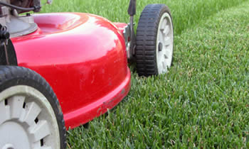 Lawn Care in Spokane WA Lawn Care Services in Spokane WA Quality Lawn Care in Spokane WA